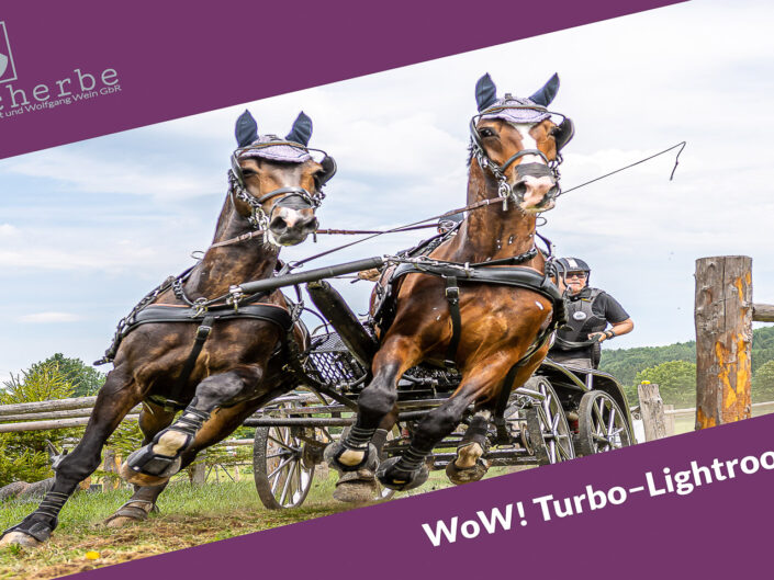 WoW! Turbo–Lightroom <br>– Wochenendkurs –